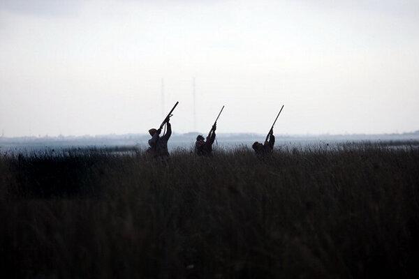33 شکارچی غیرمجاز در تهران دستگیر شدند