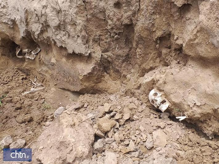 اسکلت های انسانی کشف شده در قره تپه بندرترکمن مربوط به قرون متأخر اسلامی است