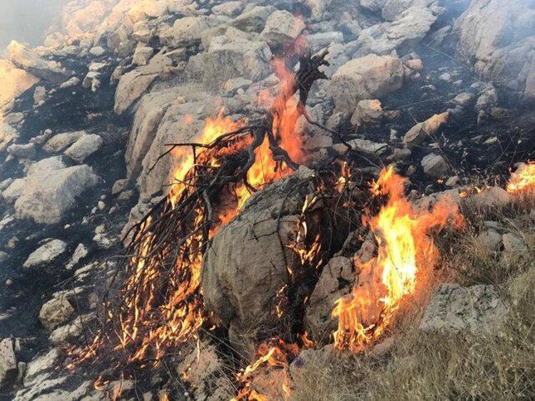 منطقه حفاظت شده خائیز در شرایط فوق العاده بحران