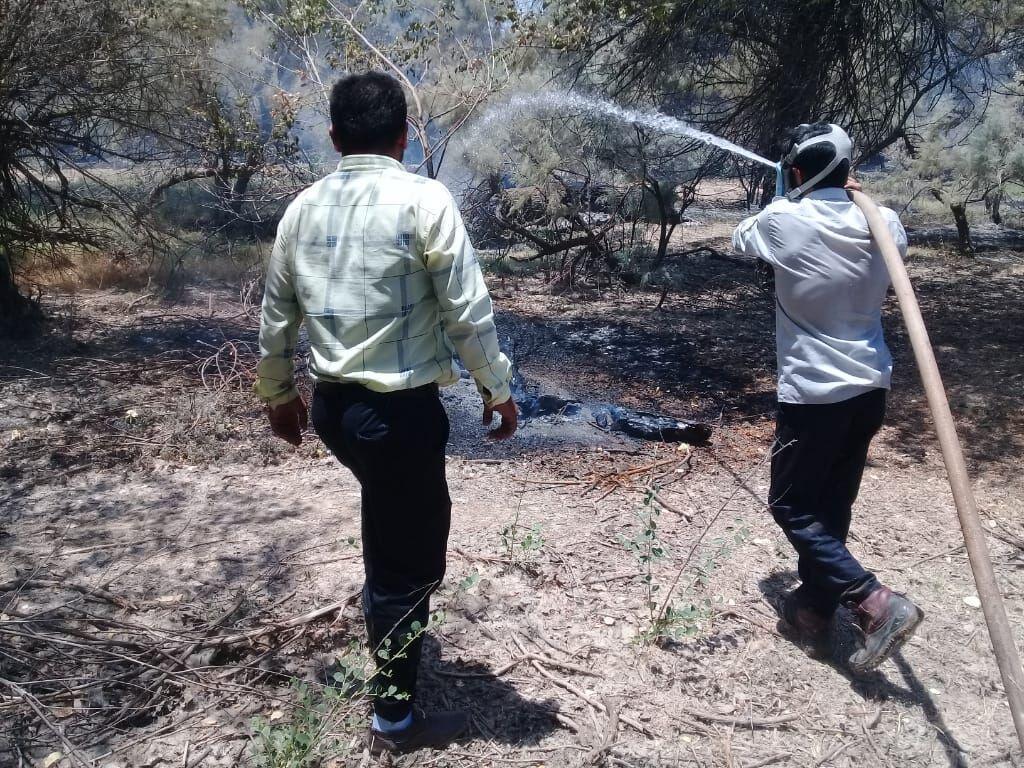 خبرنگاران ممنوعیت آتش زدن بقایای گیاهی پس از برداشت محصول در مانه وسملقان