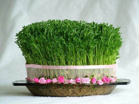 ارزش غذایی سبزه هفت سین