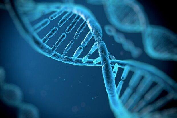 نرم افزار اکسل عامل تغییر نام ژن ها!