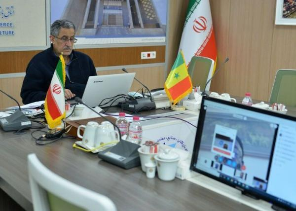ایران آماده سرمایه گذاری در صنایع نفت و پتروشیمی سنگال است