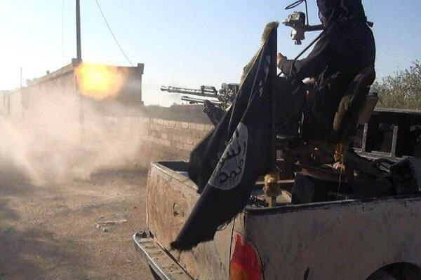 سازمان ملل: القاعده و داعش در تدارک موجی از حملات هستند
