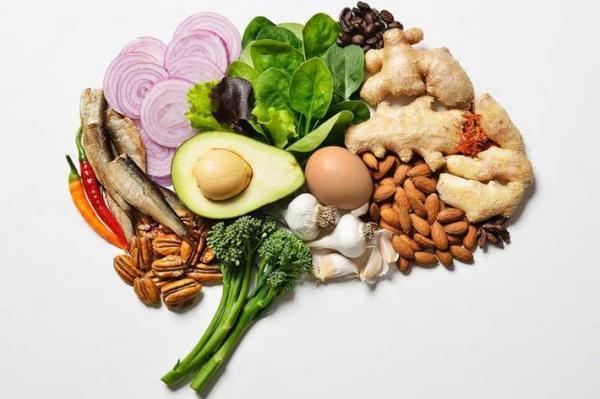 غذاهایی که علیه فراموشی در بدن عمل می نمایند