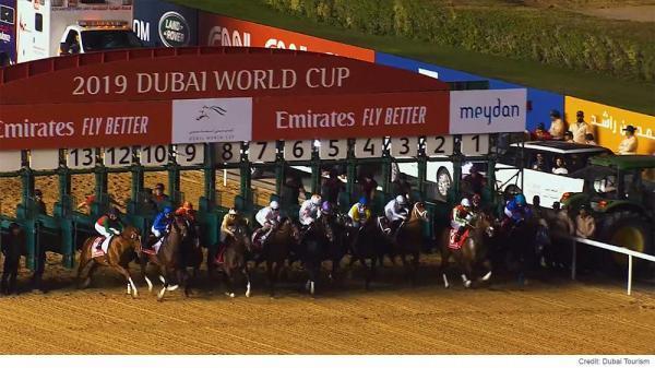 نگاهی به برگزاری گرانترین مسابقه اسب دوانی جهان در دوبی