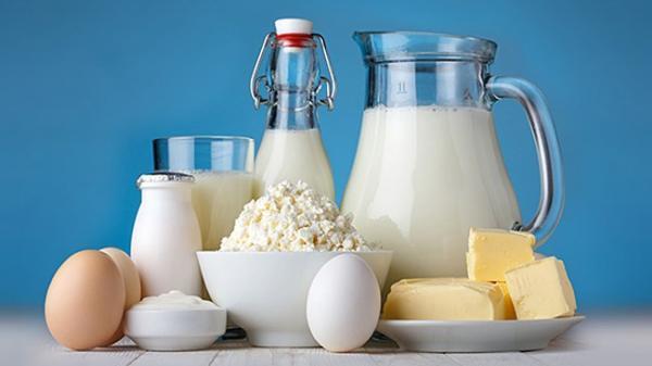 قیمت لبنیات ثابت می ماند اگر خوراک دام با نرخ مناسب تامین گردد